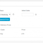 Delivery Settings - Product Delivery Date for WooCommerce