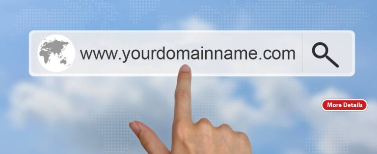 How to start an Ecommerce Business- Secure your domain name