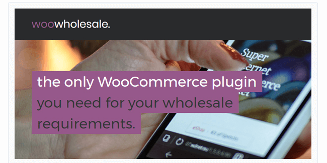 Best Free & Premium WooCommerce plugins - WooCommerce Wholesale Pricing
