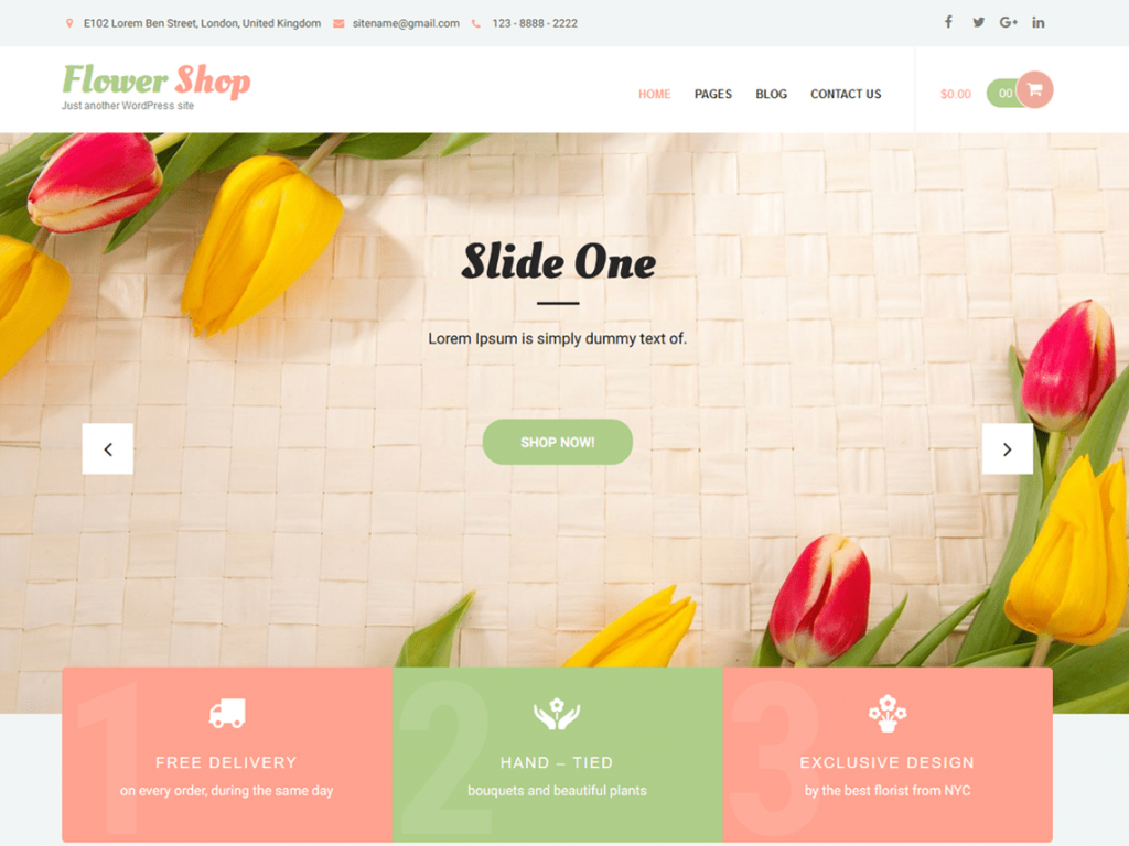 Best Themes for WooCommerce Store   tychesoftwares.com