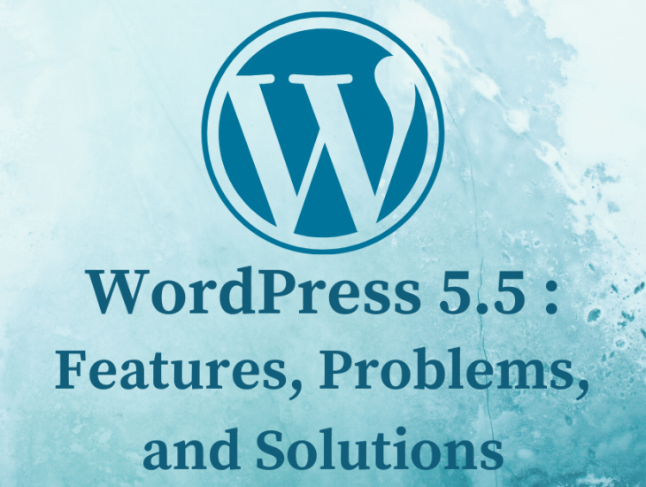 WordPress 5.5: Features, Problems and Solutions