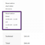 Multiple Time Slot Addon for WooCommerce Booking and Appointment Plugin   tychesoftwares.com